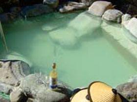 仙石原温泉 草原とにごり湯の宿 セブンスヘブン