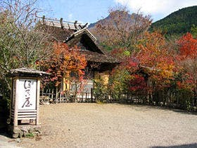 九州で男一人旅。おすすめ温泉旅館