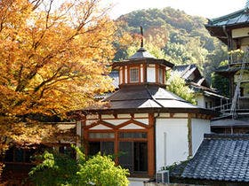 修善寺・天城峠方面、母娘二人で1、2泊予定。よい温泉旅館を。