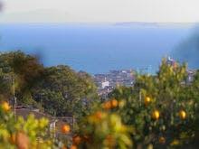 島、海望む、みかんの丘の貸切湯 ボンファム