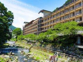 一人で富士山に行って露天風呂で満喫したい。富士山の日に泊まれる宿を教えてください。登山はしません。