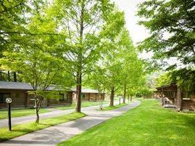 木々に囲まれた敷地内。散歩をしているとウサギやリスに会えるかも♪