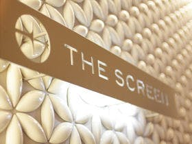 THE SCREEN