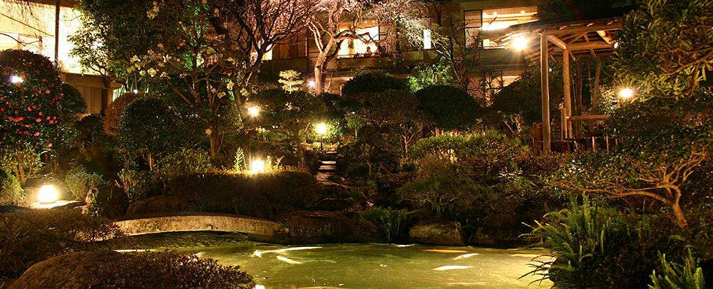 Japanese Garden at Night