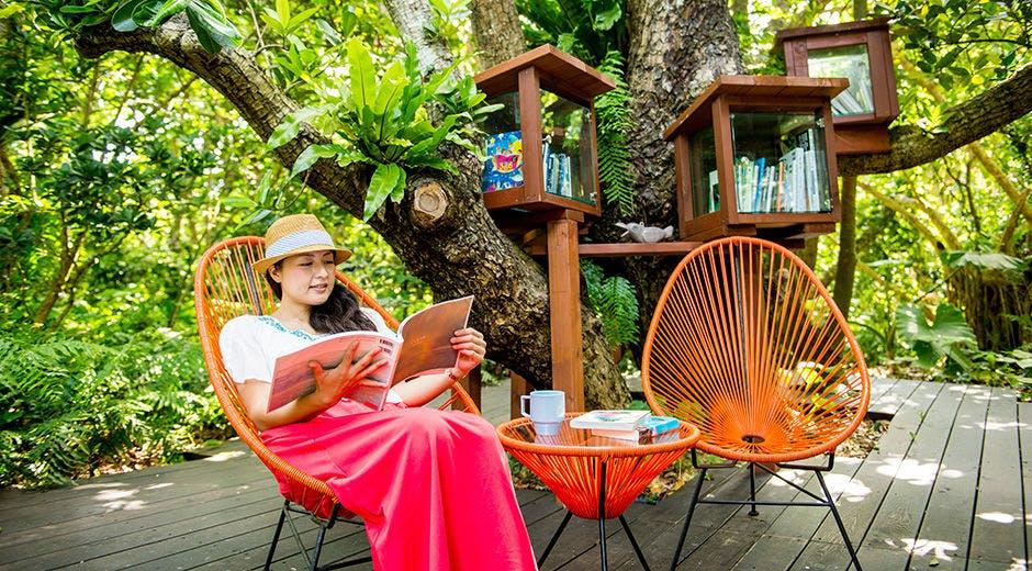 西表島ジャングルブックカフェ