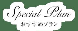 ホテル日航アリビラ ヨミタンリゾート沖縄 おすすめプラン